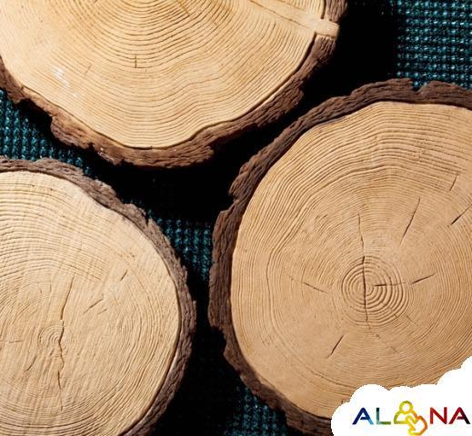 Спил дерева из бетона купить гидроклин для бетона